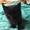 Подарю милого котенка #989909