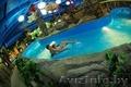 Незабываемый отдых в аквапарке \
